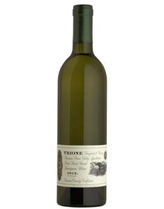 2013 Trione Sauvignon Blanc